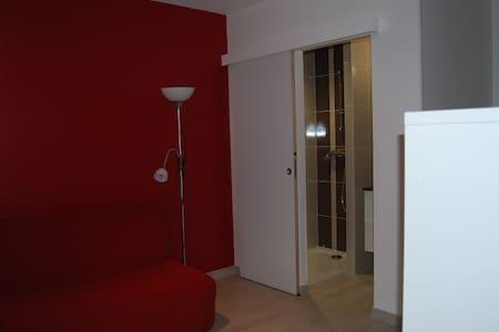 Chambre avec salle d'eau. - Chazay-d'Azergues - Bed & Breakfast