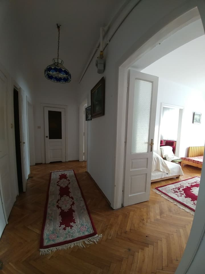 Spacious Apartment in City Center