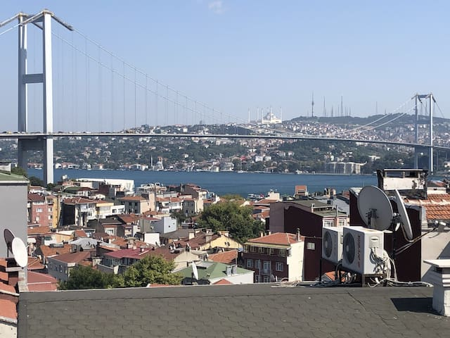 Historical Villa with Bosphorus View and Backyard