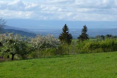 Logement 6 personnes au calme, à la montagne - Thorens-Glières
