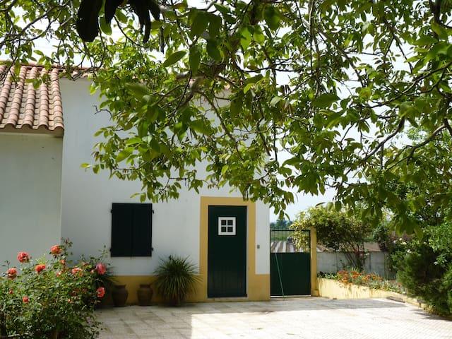 Green symphony - Pombalinho - Villa
