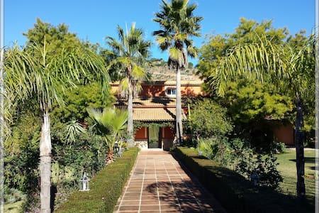 Jardines exteriores muy cuidados - Maison