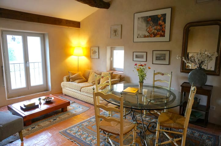 Charming hideaway in Lourmarin - Lourmarin - Apartment