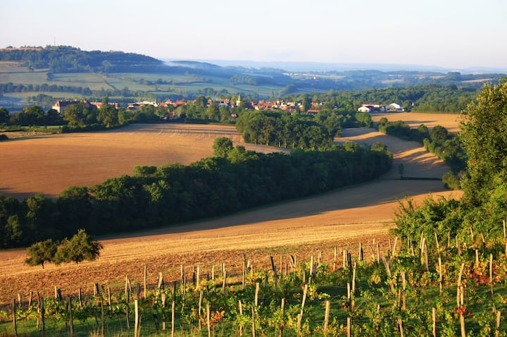 Typical Burgundy house, great view.