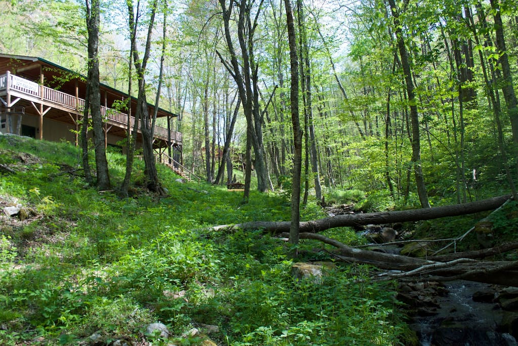 Mountain Creek Cabin sits on 1.6 acres with Fie Creek and a waterfall