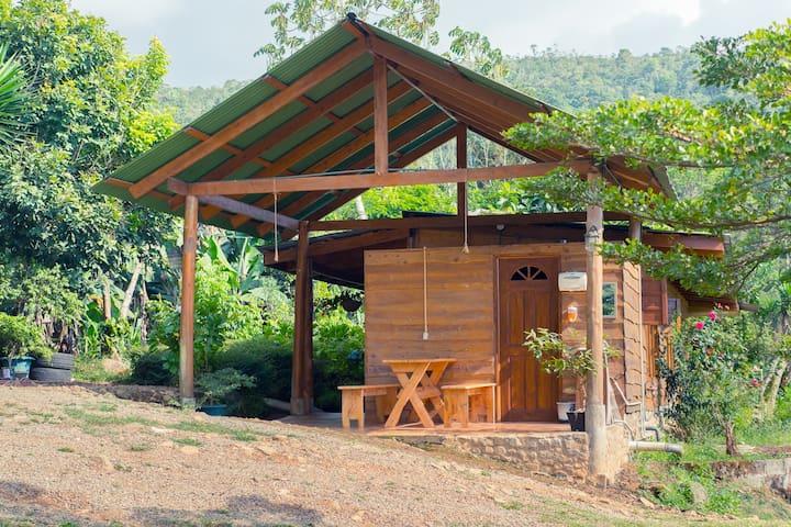 Rain EcoLodge Cabaña 1