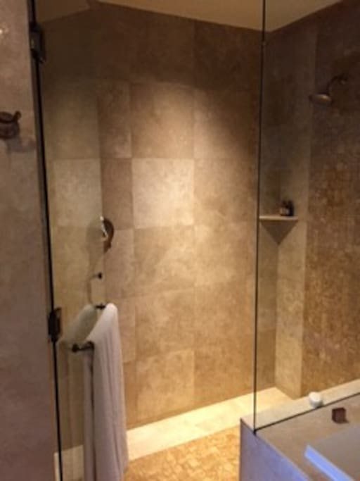 Main bathroom shower