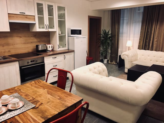 A9: Modern two room apartment with private kitchen