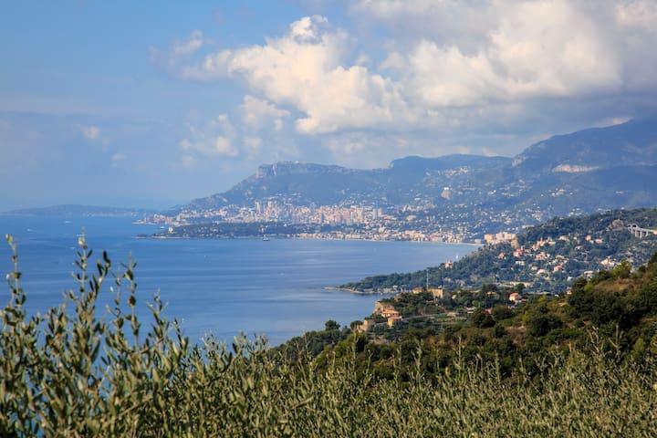 View towards Menton and Monaco