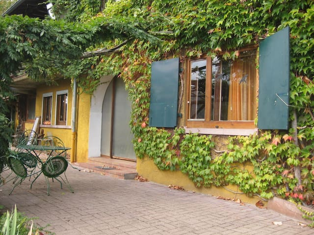 Charmant petit appartement à flanc de colline - Gunsbach - Daire