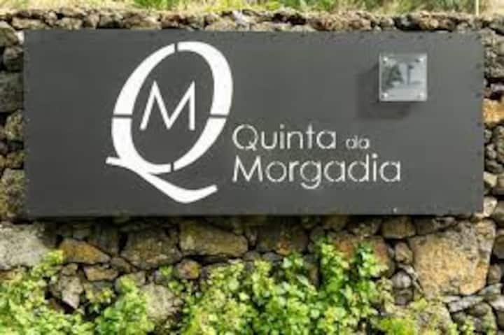 Quinta da Morgadia - Azorean Butler
