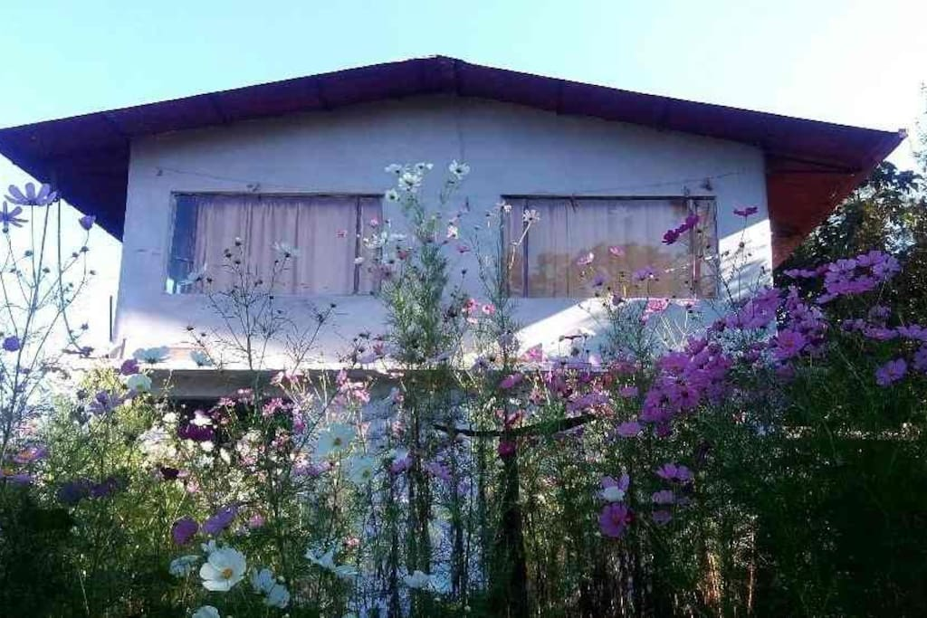 Kaaphal Hill Retreat - A building in a fruit orchard