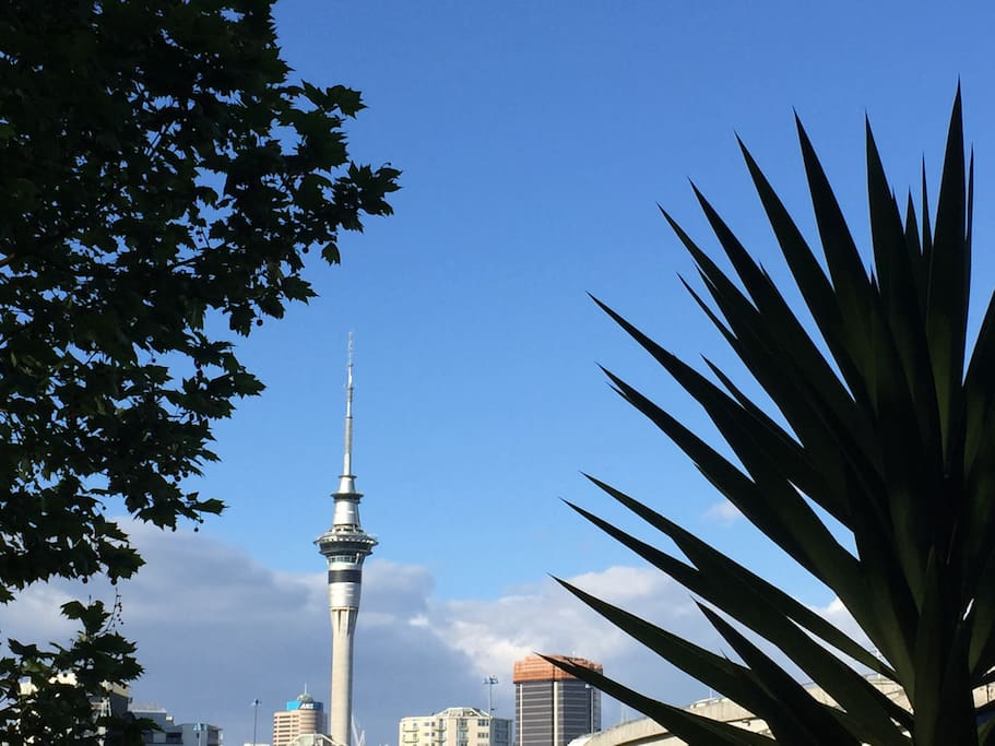 View from the living room. The Skytower is just 10' walking distance.