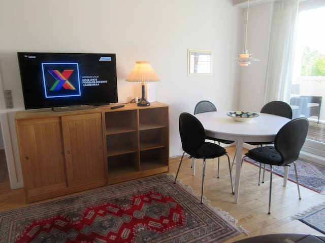 SMART-TV med adgang til mange kanaler og internet