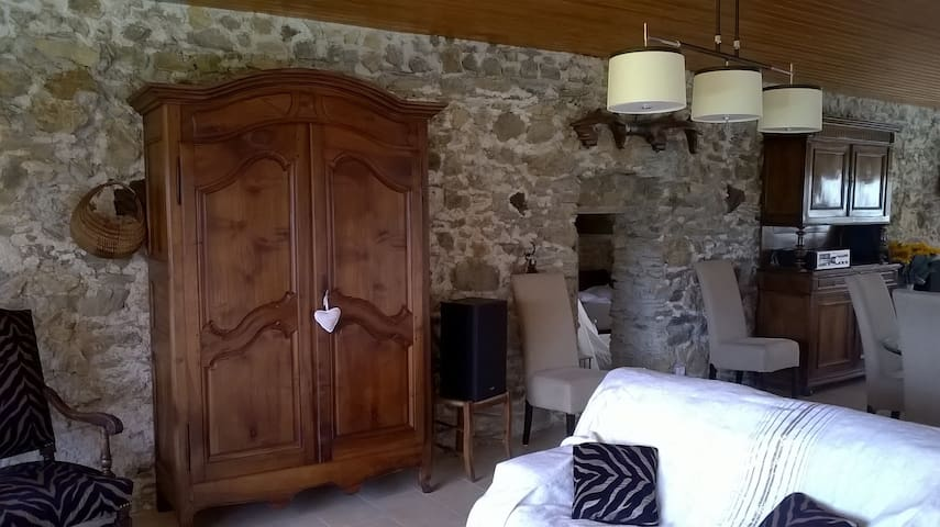 Gite raffiné en pleine nature rénové cette année - Montredon-Labessonnié - Casa