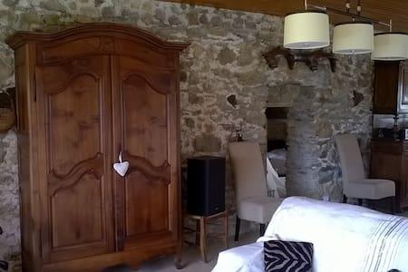 Gite raffiné en pleine nature rénové cette année - Montredon-Labessonnié - Huis