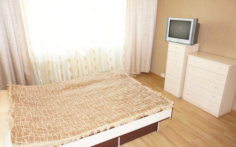 Comfortable and cozy apartment near the metro.