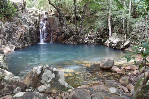 Cairns Birdwing @Butterfly Valley