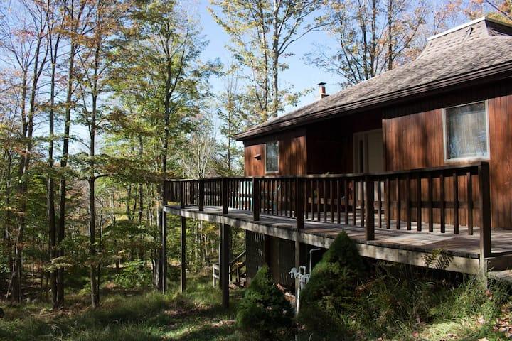 Cedar Haus - Lake Access, Unique Home, Hot Tub, Ping Pong Table!