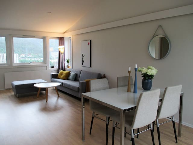 Modern apartment close to Bergen City Center