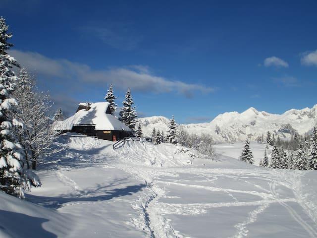 Chalet Tisa Velika Planina - Velika Planina - Huis