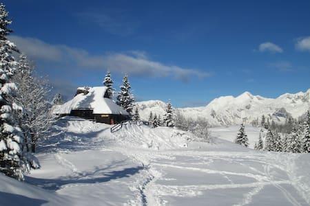 Chalet Tisa Velika Planina - Velika Planina