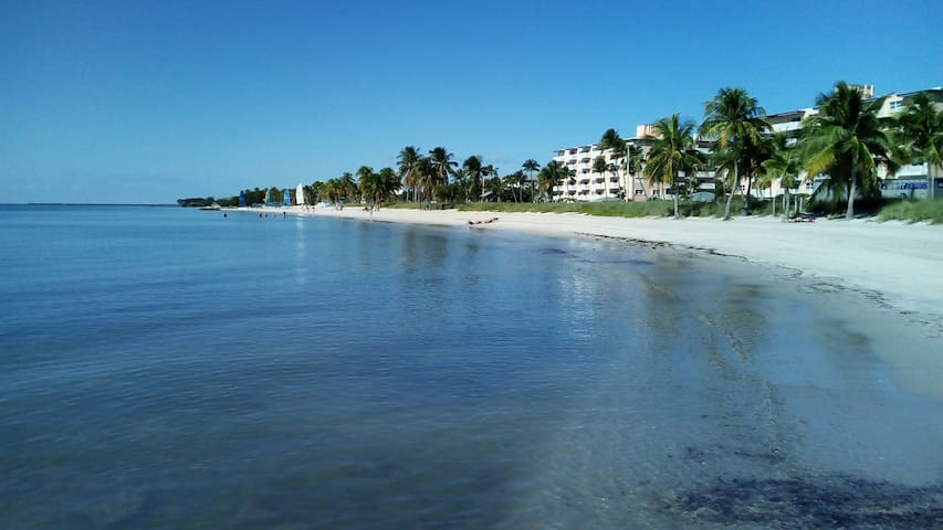 Seaside Condo, two pools, JANUARY SPECIAL