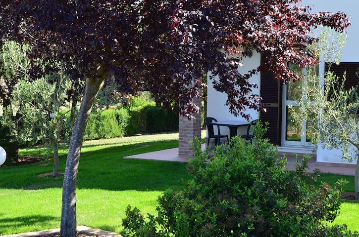 Agriturismo Il Fontanile - Manciano - Bed & Breakfast