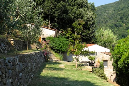 Alleinstehendes Privathaus in Torcigliano/Toscana - Torcigliano - บ้าน