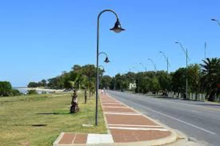 Ambiente frente al Rio de la Plata