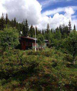 Traditional norwegian cabin - Etnedal - Srub