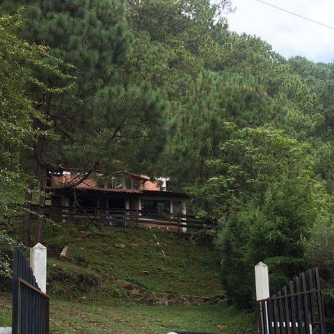 Alazanas Cabains - Mazamitla - Natur lodge