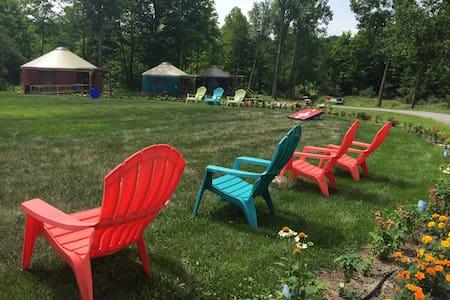 Your favorite Turquoise Yurt