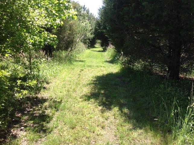 Short walk to pond