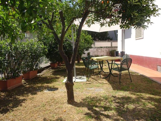 Casa con giardino e spiagge in zona case in affitto a napoli campania italia - Casa con giardino napoli ...