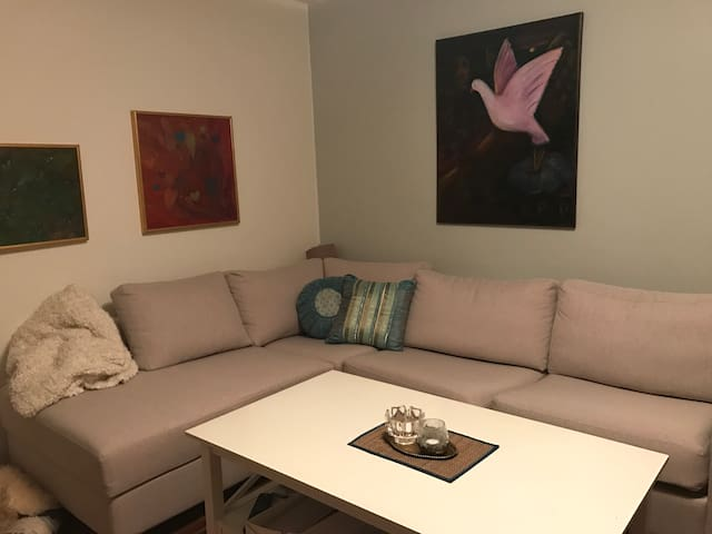 15 minutes to central, near metro and train - Stockholm - Flat