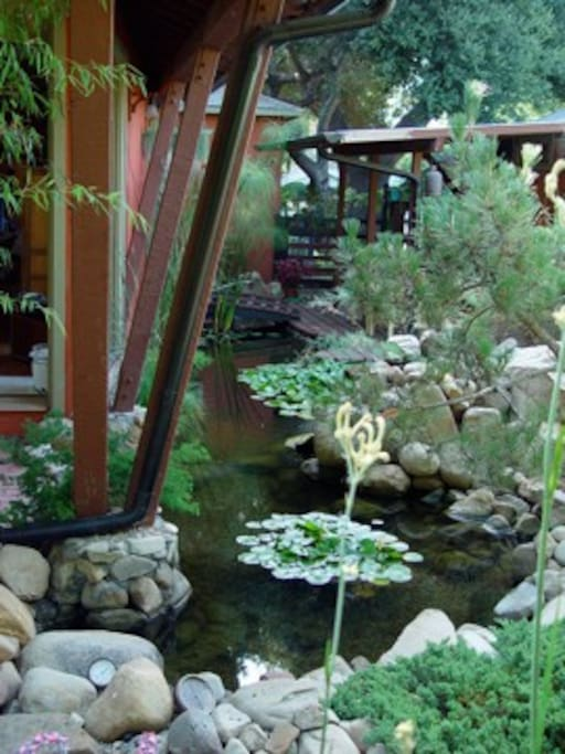 Koi pond. Artist's Studio to right