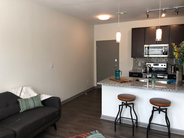 One-Bed Frankfort Apartment with Courthouse Views