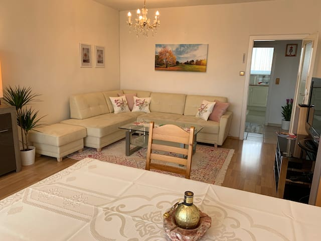 Apartment near Danube & VIC (3min away from Metro)