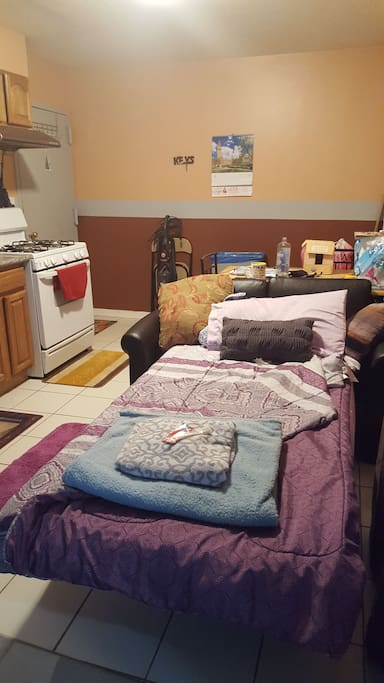 common/shared area.. LIVING/kitchen room with sofa twin bed sleeper in studio type setting in my home.