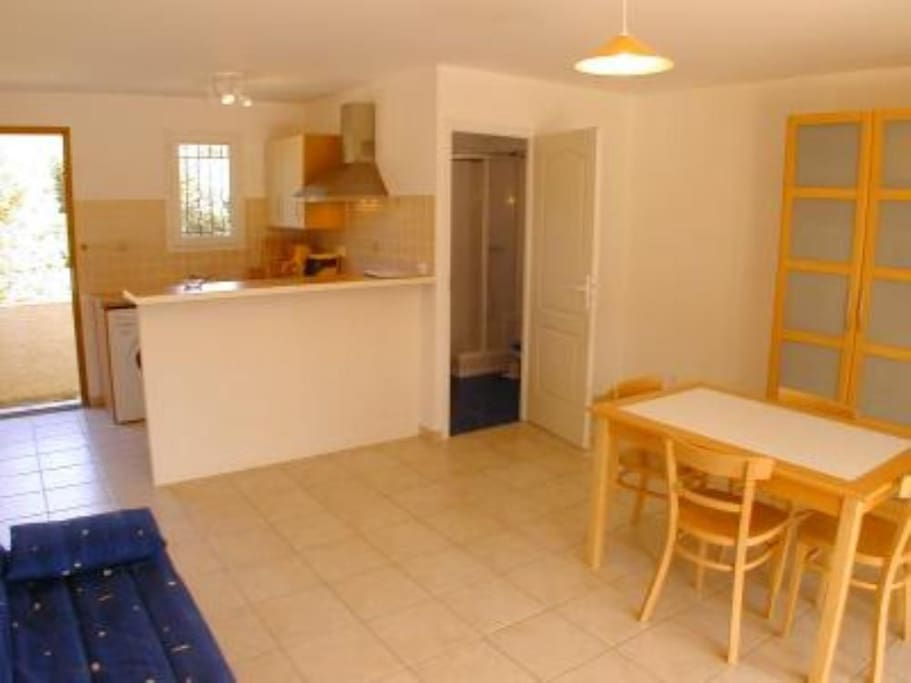 Spacious and bright studio apartment with dining table and sleeping sofa