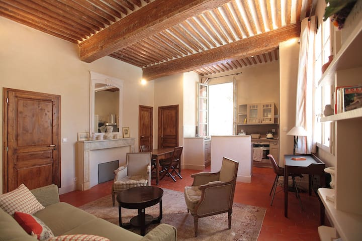 Beautiful Aix apartment with amazing location