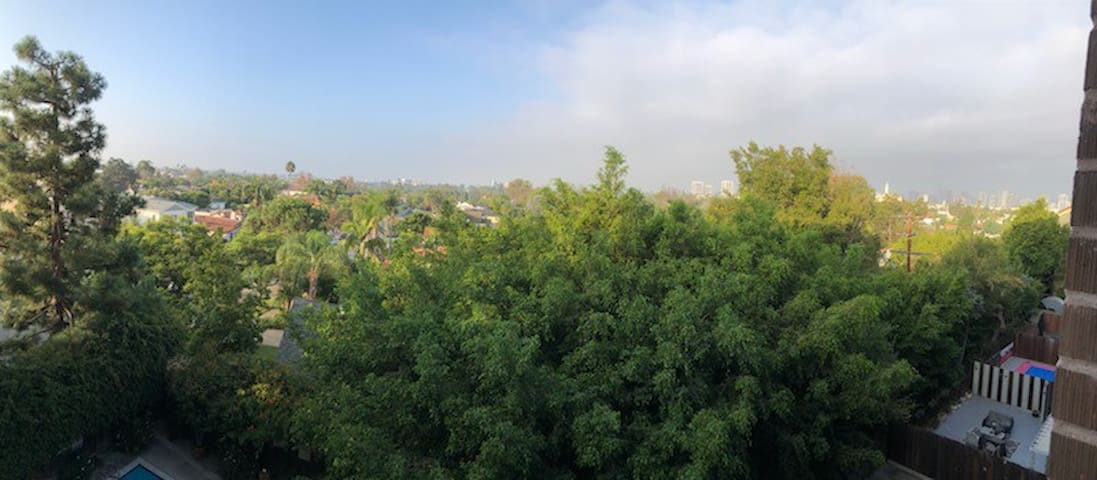 Large one bedroom in central Los Angeles area