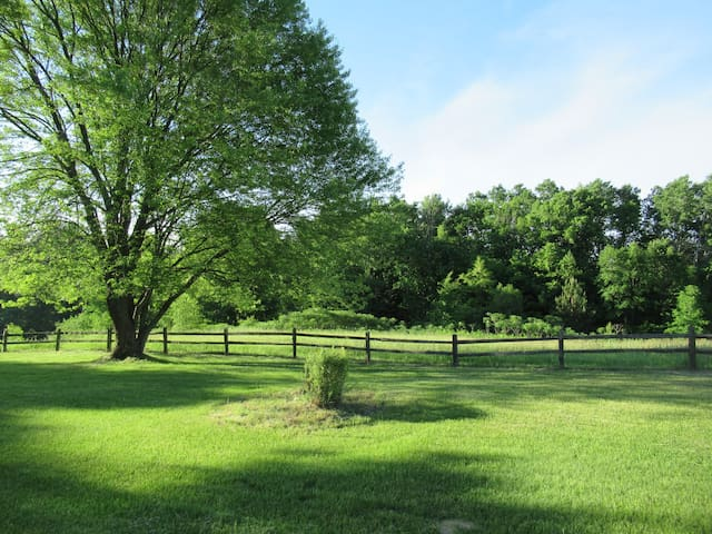 Backyard fenced with old cedar logs.  You will enjoy bucolic tapestry, treelined trails, apple trees and a sense of wilderness beauty that moves your spirit.