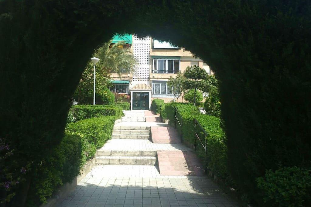 Vista desde la entrada al jardín común del edificio