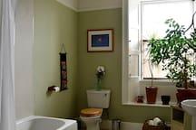 The bathroom (shared space)