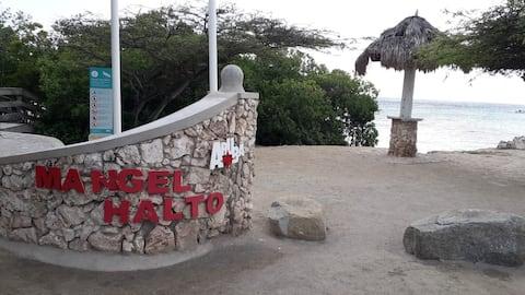 Studio apartment Aruba  Mangel Halto Beach