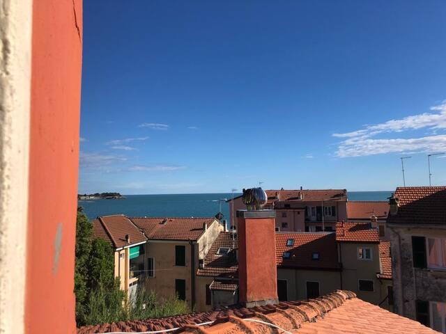 Odore Di Mare  - CITRA 011016-LT-0445