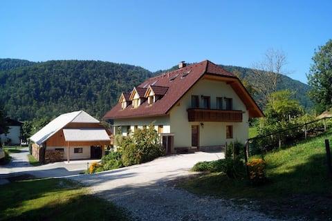 Charmig lantlig lägenhet nära Kamnik