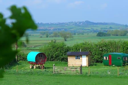 Gypsy Caravan near Glastonbury - Compton Dundon